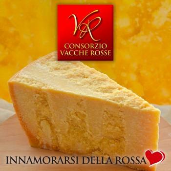 Punta - Parmigiano Reggiano D.O.P. Vacche Rosse - 24 mesi (1kg)